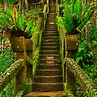 """""""Stairway In Paradise"""" by Phil Thomson IPA"""