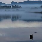 Leven river morn by gaylene