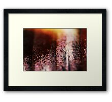 Butterfly wing scales macro Framed Print