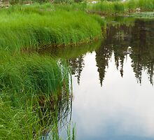 Rainbow Lake  by Reese Ferrier