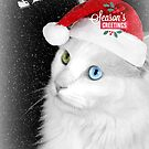 "Delain says ""Happy Holidays"" by Scott Mitchell"
