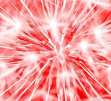 Dandelion clock - red by Ian Hosker