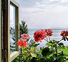 Lighthouse Window by Monnie Ryan