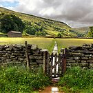 Through The Fields, Muker by Mat Robinson