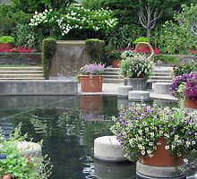 Pool & plantings I by Mike Shell