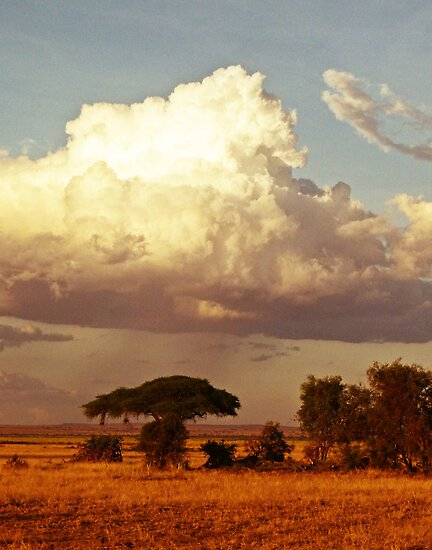 African storm cloud by Linda Sparks