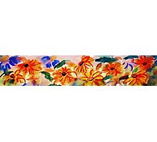Border of Anna's Flowers Photographic Print