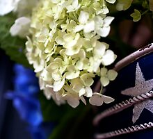 White Hydrangea - stars and stripes container by KSKphotography