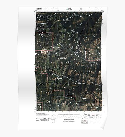 USGS Topo Map Washington State WA Buckhorn Mountain 20110505 TM Poster