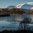 Mountain Lake - Reflections in Ice by johngs