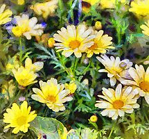 Featured in All Glorious Gardens – 16 July 2012