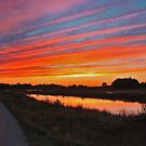 Seney Wildlife Refuge Scenic Drive at Dusk by Megan Noble