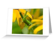 Green hopper! Greeting Card