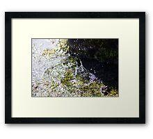 Water Warfare Framed Print