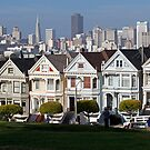 The Painted Ladies by Brendon Perkins