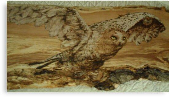 majestic snowy owl  by lynnieB