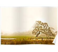 foggy on the farms Poster