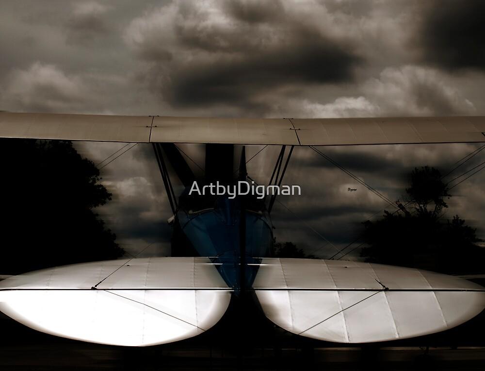 The Beauty of Flight by ArtbyDigman
