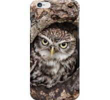 Little owl at home iPhone Case/Skin