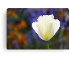 All Out of Tulip Titles Canvas Print