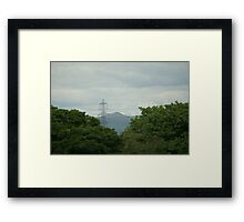 Taller than the trees Framed Print