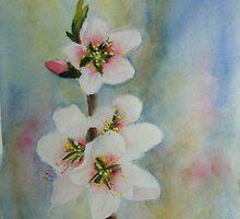 Catherine's Blossom by katymckay