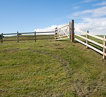 Hilltop and Gate by Colin Bentham