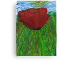 Lonely poppy Canvas Print