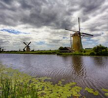 Going Dutch (Enlarge)  by John44