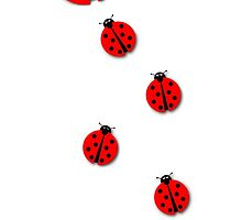 Many Ladybugs by Henrik Lehnerer