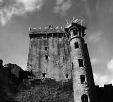 The Looming Castle by Jim McCarron