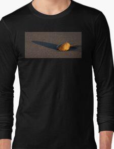 Sunset Stone Long Sleeve T-Shirt