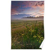 Misty, Suffolk Poster