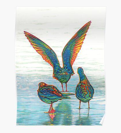 Ethnical birds II Poster
