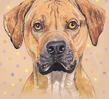 Golden Rhodesian Ridge-back dog by didielicious