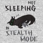 Stealth cat. by Midna