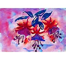 Revised, Fushia, the  dancing ballernias, watercolor Photographic Print