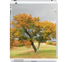 Favorite Tree iPad Case/Skin