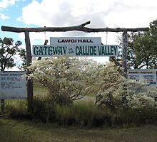 Country Sign! near Biloela Queensland. Aust by Rita Blom