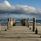 Old Jetty Beams, St Clair Beach, Dunedin, 2 by DeliaA