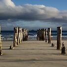 Old Jetty Beams, St Clair Beach, Dunedin, 1 by DeliaA