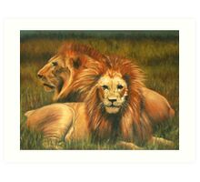 Lions Painting Art Print