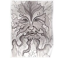 Nature's Face- Pen and Ink Poster