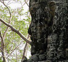 Angkor Thom, Cambodia by greenspirit