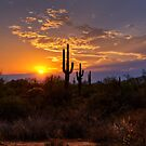 Sunset in  the Southwest  by Saija  Lehtonen