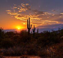Sunset in  the Southwest  by Saija  Lehtonen