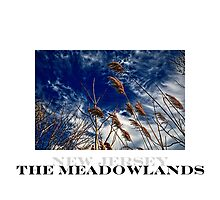 """""""The Meadowlands"""" by Mark Santos"""