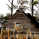 Abandoned Shelters of Dorchester County, Maryland_1 by Hope Ledebur