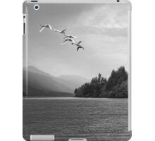 WINTER MIGRATION iPad Case/Skin