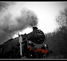 Full Steam Ahead by Paul  Reece
